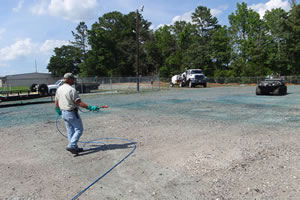 utility vegetation management