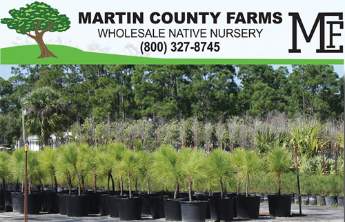 Martin County Farms